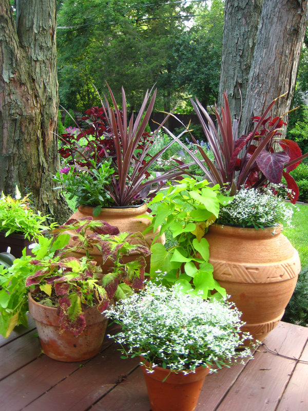 Deck container garden ideas