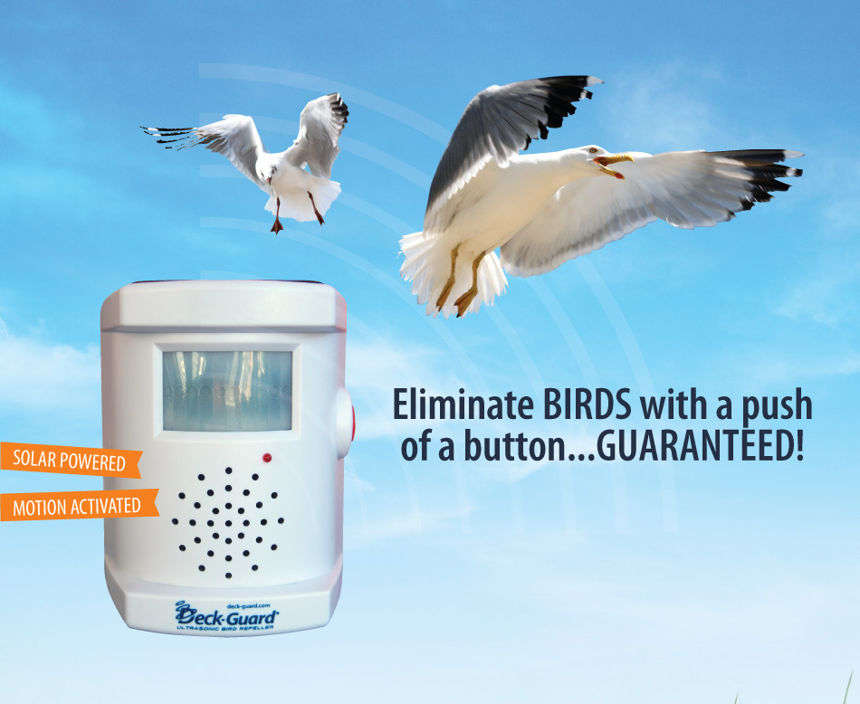 Deck guard bird repeller review