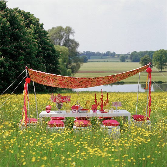 Outdoor canopy for party
