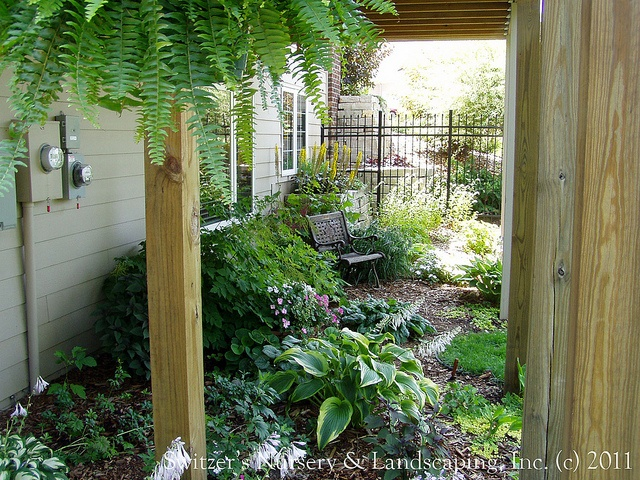 Under deck garden ideas